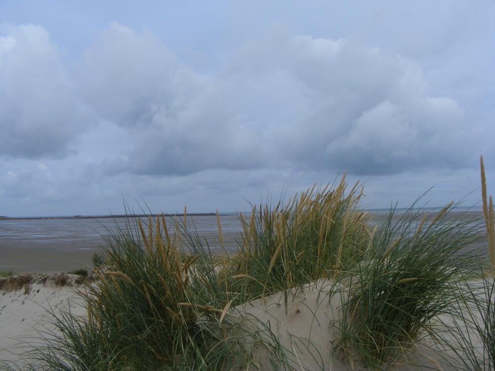 vue des dunes en fin de journée