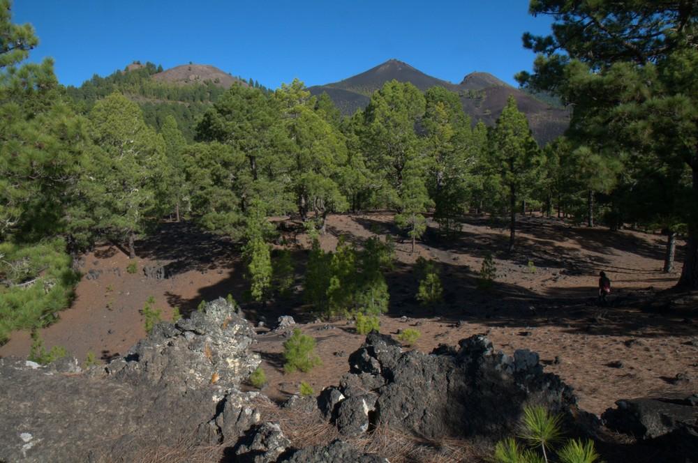 Vulkanansichten