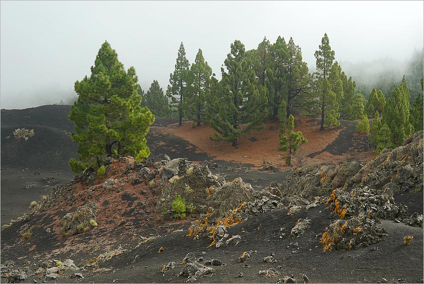 Vulkanlandschaft...
