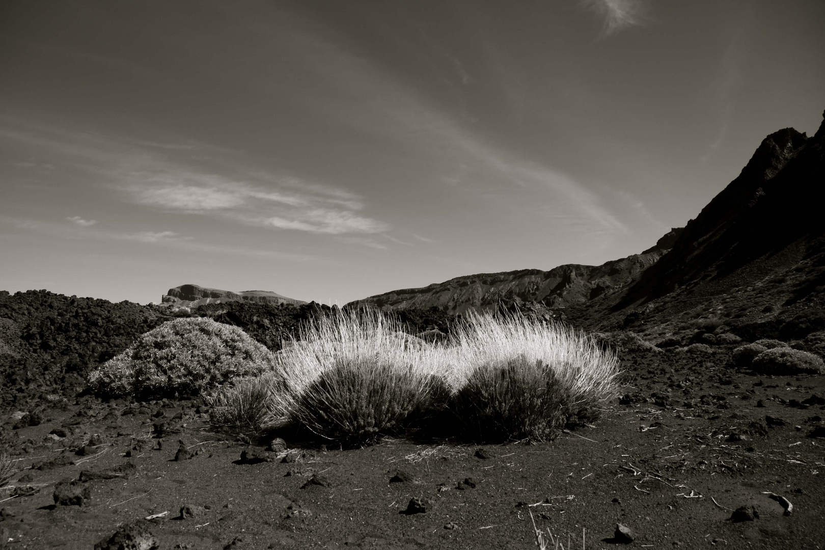 vulkanlandschaft, teneriffa
