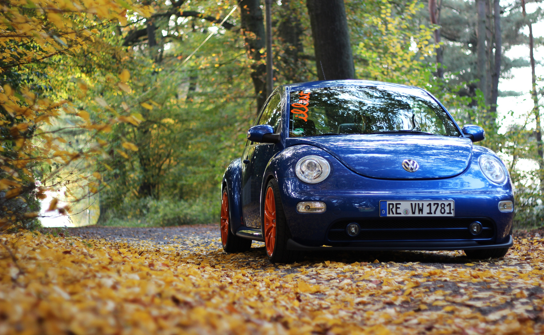 VW Beetle 1.8t Tuning - Blau Orange - Herbst