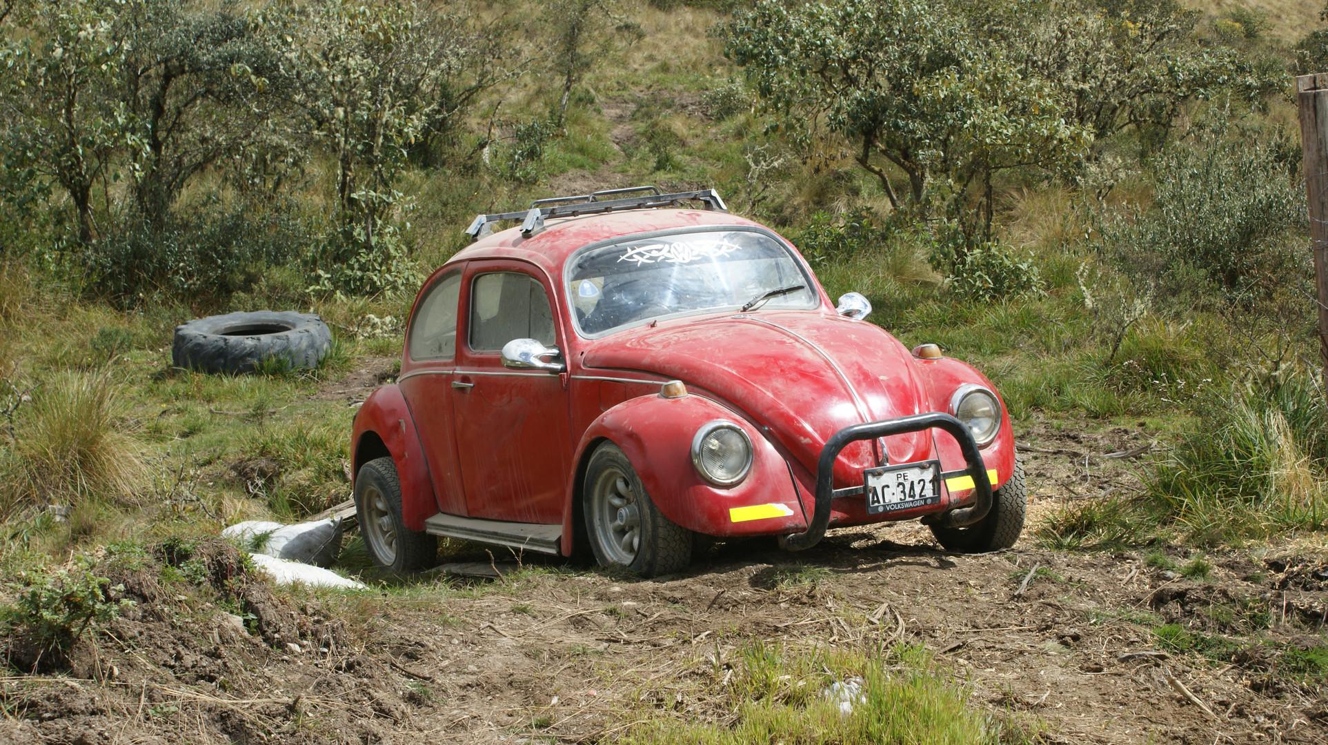 VW-Käfer