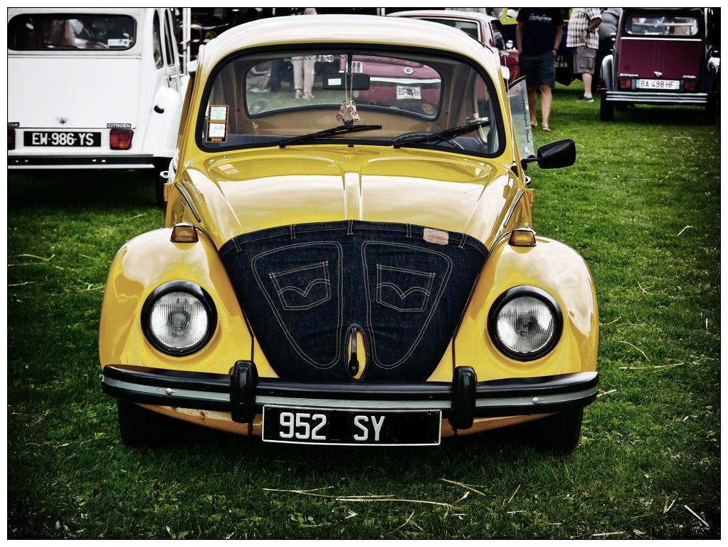 VW Levis