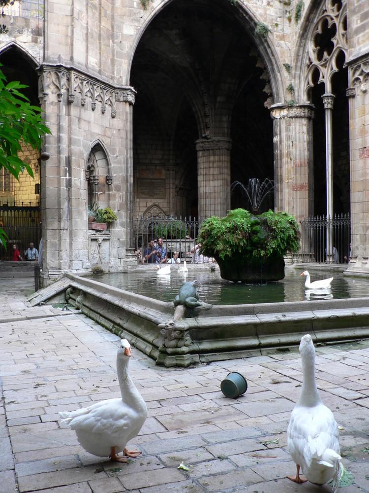 W Katedrze Barcelonskiej