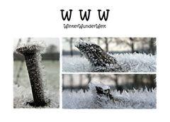W W W