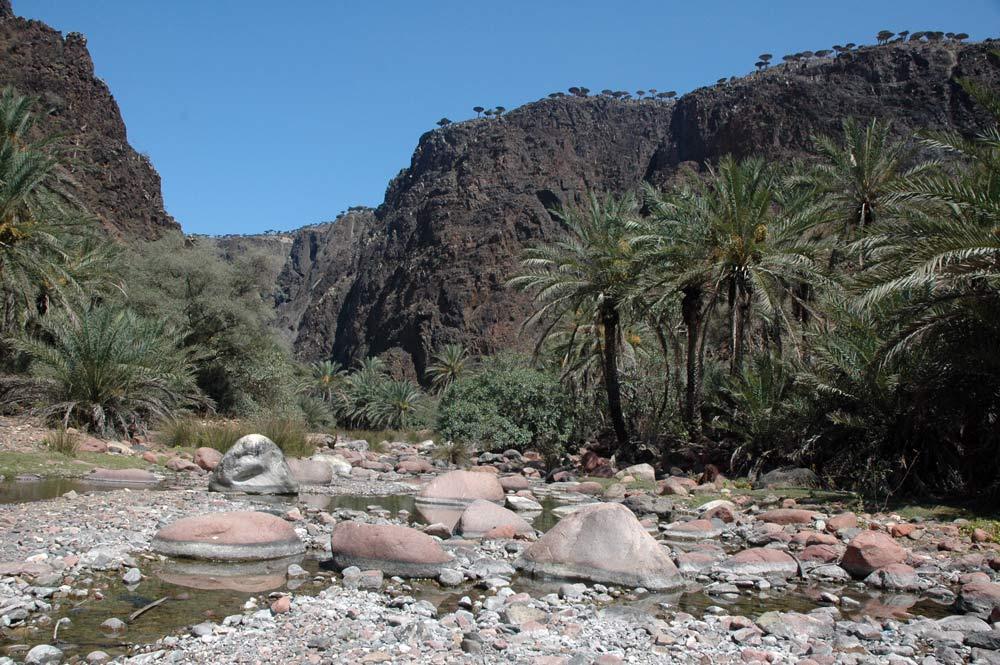 Wadi Dirrho