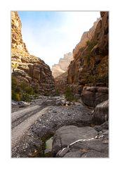 Wadi Nakher/Oman