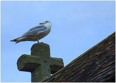 Wächter der Kapelle