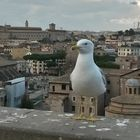 Wächter über Rom