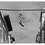 """""""wag the dog"""" oder """"good old (red) shoe"""" - ck -"""