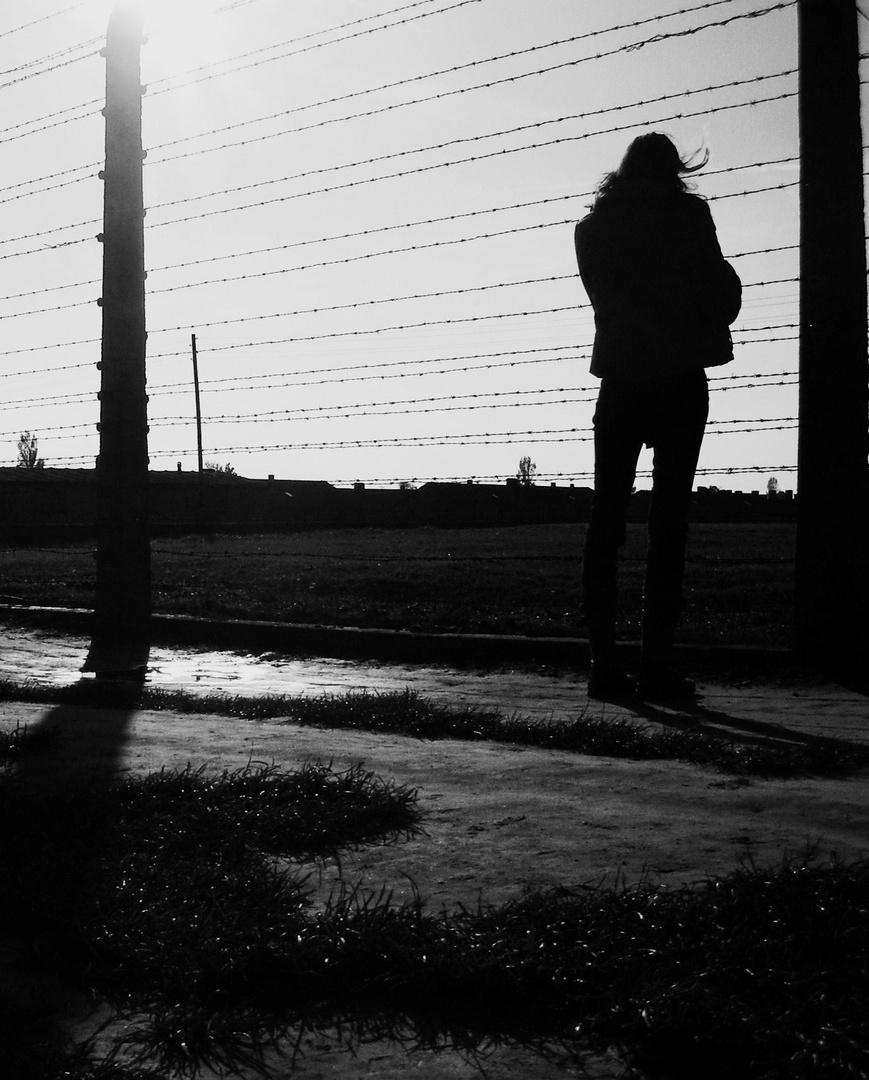 Waitting for freedom
