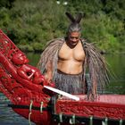 waka regatta in NZ