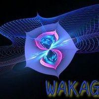 wakagi