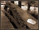 Wal-Knochen-Brücke