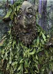 Wald-Geist im Zauber-Wald