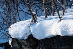 Wald in Winter  ..DSC_2995