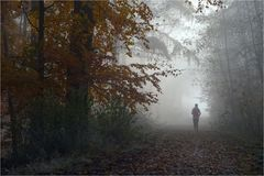 Wald-Lauf