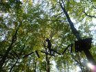 Wald und Abenteuer