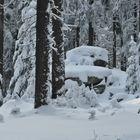 Wald und Felsen, Raureif und Schnee...