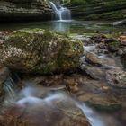 Wald Wasser Zauber