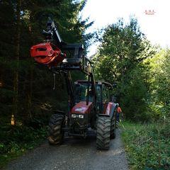 """""""Waldarbeiter begegnet auf dem Weg zur Siede Alpe"""""""