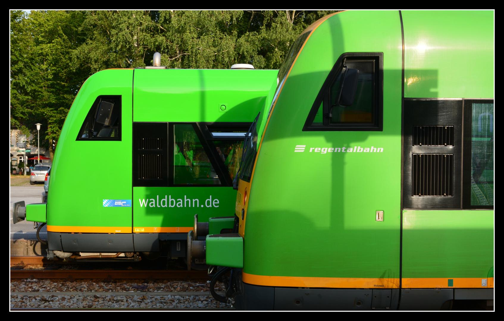 Waldbahn trifft Regentalbahn