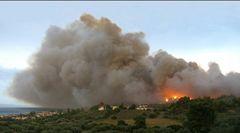 Waldbrand - Forrest Fire