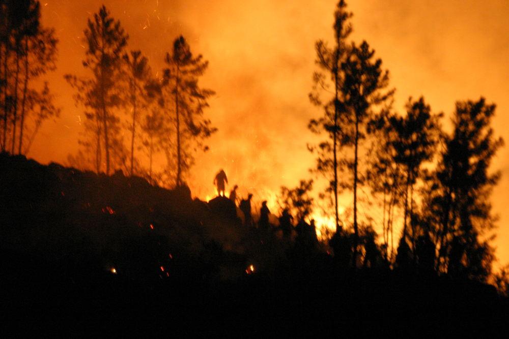 Portugal Waldbrand