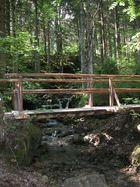 Waldbrücke