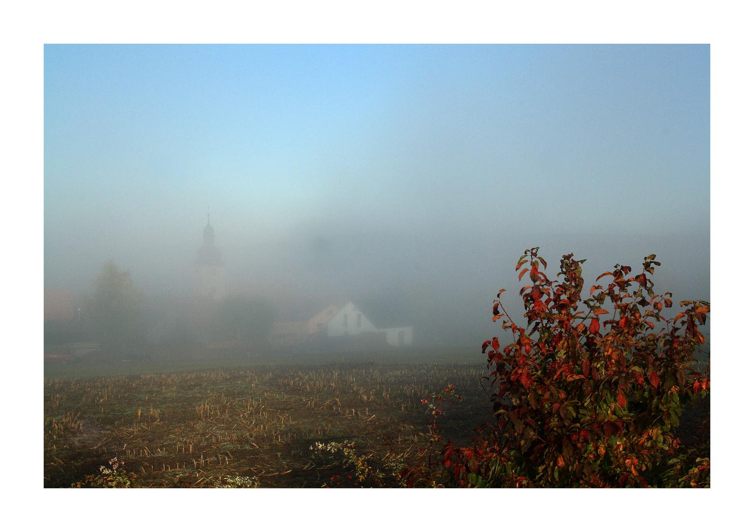 Waldeck im Morgennebel .jpg