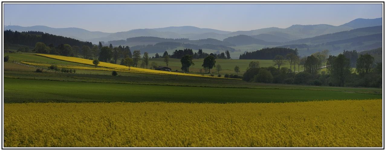 Waldecker Land