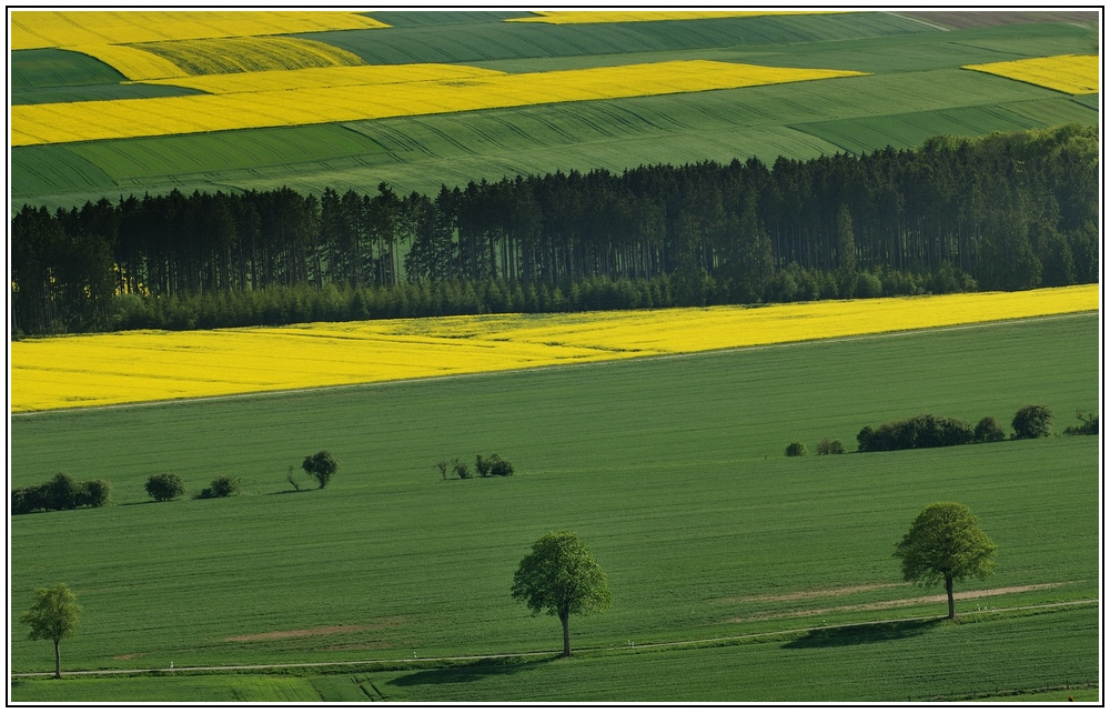 Waldecker Land 6