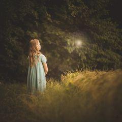 Waldeslicht...