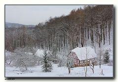 Waldfrieden