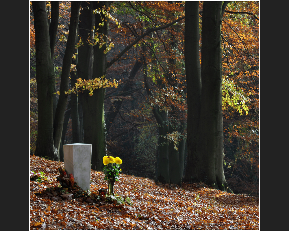 Waldfriedhof