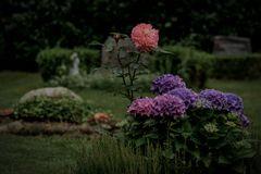 Waldfriedhof Buxtehude_01