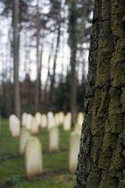 Waldfriedhof Oberrad