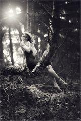 * Waldfrüchtchen *