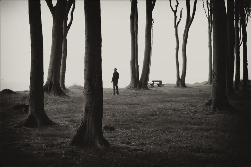 Wald.Rand.