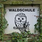 """""""Waldschule"""" - Januar 2018"""