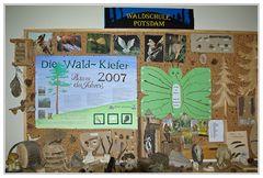 """"""" Waldschule Potsdam """""""