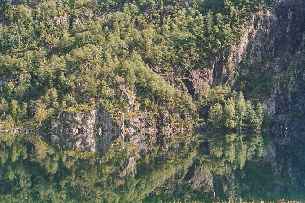 Waldsee in Norwegen