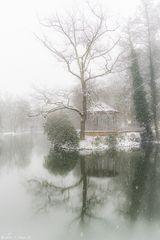 Waldsee, winterlich #1