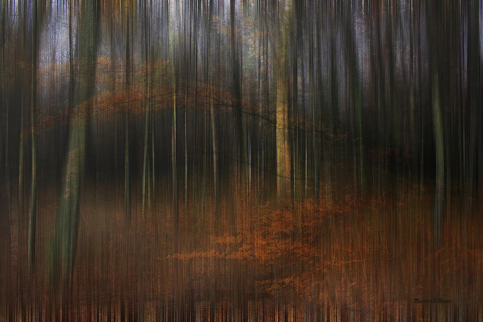 Waldseele