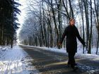 Waldspaziergang im Schnee
