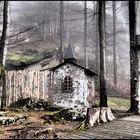 Waldsteinburg im Nebel