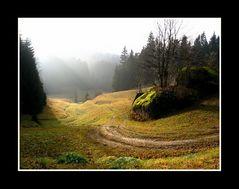 Waldviertel im Herbst