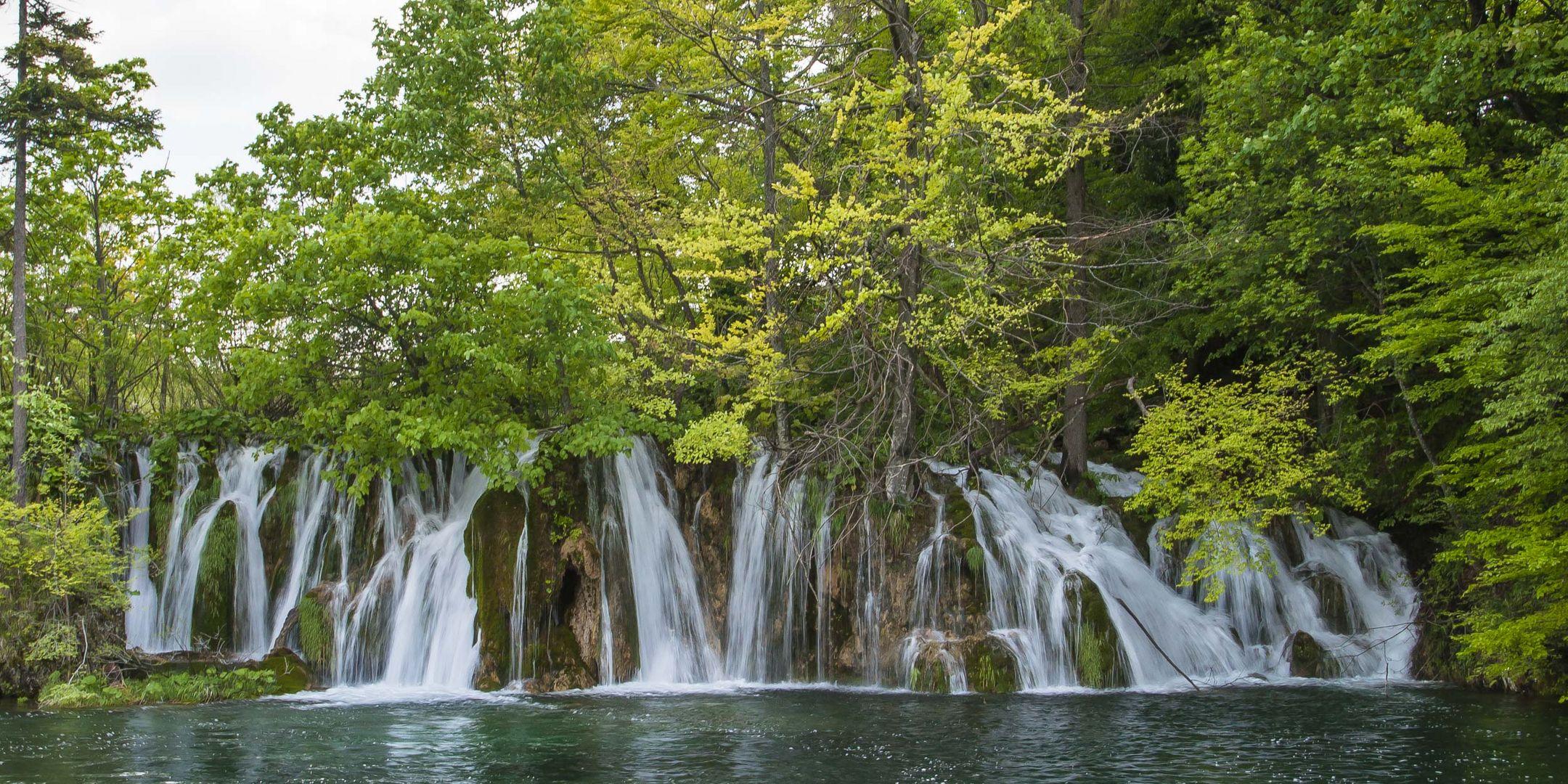 Waldwasser - I