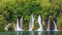 Waldwasser - II