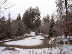 Waldweiher...